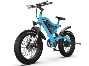 """AOSTIRMOTOR Electric Mountain Bike 20"""" 4.0 inch Fat Tire Ebike, 500W motor, 48V 15AH Removable Lithium Battery, Electric Bicycle for Adults S18-M(Blue)"""