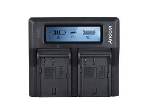 Andoer DMW-BLF19E Dual Channel LCD Camera Battery Charger for Panasonic Lumix DC-GH5 DMC-GH3 DMC-GH3K DMC-GH4 DMC-GH4K