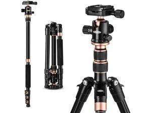 Rangers 56 Compact Travel Tripod Lightweight Aluminum Camera Tripod for DSLR Camera with 360&deg Panorama Ball Head and Carry Bag