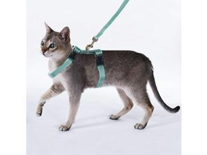 PAWISE Cat Harness and Leash for Cats Adjustable Kitten Walking Harness (Color Random)