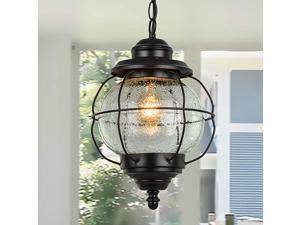 Outdoor Hanging Lantern Porch Painted Black Metal with Clear Bubbled Glass Globe in Iron Cage Frame 1Light Light 102quot Exterior Pendant Lighting for Garage