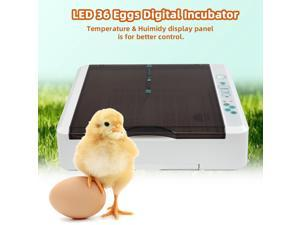 36  LED Light Egg Practical Fully Automatic Poultry Incubator with LED Light US