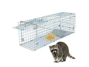 ZENY Animal Trap Steel Cage  Humane Release Rodent Cage Traps Control, Outdoor Use, Opossum, Squirrel, Skunk, Raccoon