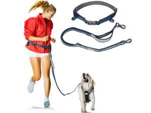 Durable Hands Free Dog Leash w/ Adjustable Waist Belt and Shock Absorbing Bungee