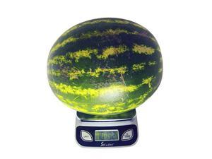 Food Scale Kitchen Scale Postal Scale Weigh in Pounds Ounces Grams Precise Weight Scale 1g 001oz to 11 lbs Batteries Included
