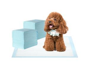 Super-Absorbent Waterproof Dog and Puppy Pet Training Pad, Housebreaking Pet Pad