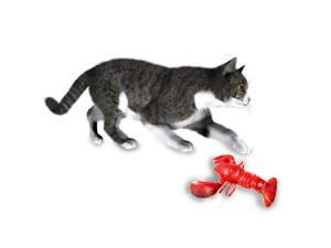 Funny Cat Toy Simulation Lobster Toy Catnip USB Charging Lobster