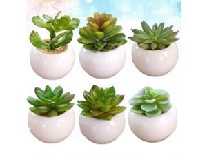 6pcs Home Artificial Succulent Fake Plants Decoration Living Room Desk Office Shelf Decaration(include Pot, Happy Lotus, Red Medium Small Flower, Frost Lotus, Round Core Lotus, Rain Butterfly, Green