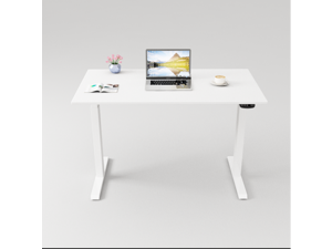 """Gaming Desk Electric Lift Standing Desk Home Office Computer Desk With Dual German OKIN Motor  White 47.2""""L x 23.6""""Wx28.3''-48'' H"""