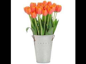 Stargazer Barn -30 Orange Tulips with Vase