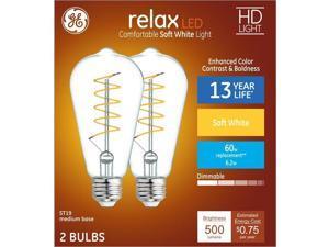 GE Relax 60-Watt EQ ST19 Soft White Dimmable Edison Light Bulb (2-Pack) LED Light Fixture Light Bulb