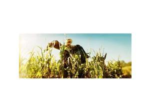Panoramic Images PPI129751L Scarecrow in a corn field  Queens County Farm  Queens  New York City  New York State  USA Poster Print by Panoramic Images - 36 x 12