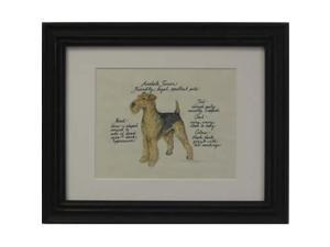 Clapper Hollow HC2 Airedale Framed Print