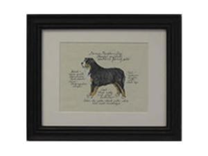 Clapper Hollow HC10 Bernese Mountain Dog Framed Print