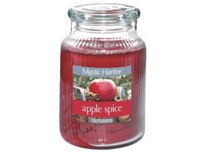 LRG APPLE SPICE CANDLE 1170812