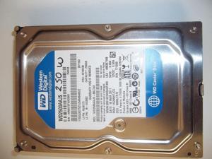 Western Digital WD2500AAJS 250 GB Caviar Blue Hard Drive