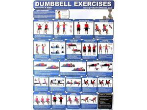Productive Fitness Poster Series - Dumbbell Exercises (Upper & Core) Home Use