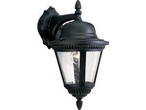Progress Lighting P5863-31 1-Light Cast Wall Lantern with Clear Seeded Glass, Textured Black