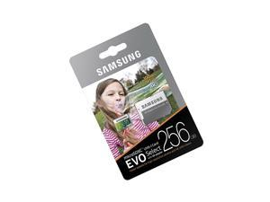 Samsung 256GB Micro EVO select V30 SD card for Galaxy 18.4 View 2 View tablet