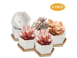 Succulent Pots 4 Inch Succulent Planters Set of 6 White Ceramic Succulent Cactus Plant Pots with Bamboo TrayPlants NOT Included