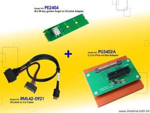 Innocard M.2 M-key to OCulink Adapter with U.2 to OCulink Cable with U.2 to PCIe x4 slot Adapter KIT