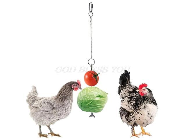 Stainless Steel Bird Chicken Veggies Skewer Food Fruit Holder for Hens Hanging Vegetable Feeder Foraging Toy Bird Treat Skewer (Electronics) photo